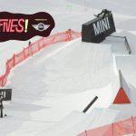 ニュージーランドで行われた「 2014 High Fives Presented by MINI」のハイライト