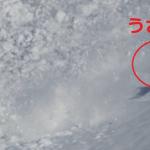 うさぎ大ピンチ!なぜか雪崩に飛び込んだうさぎの映像が話題