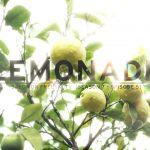 こういうスキートリップしてみたい!Lemonade – Salomon Freeski TV S7 E05(動画あり)